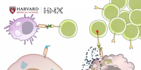 HMX Immunology Course Image