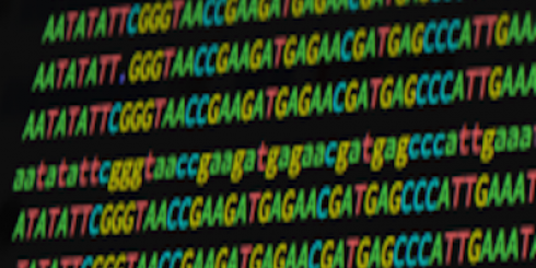 lines of genomic data (dna is made up of sequences of a, t, g, c)