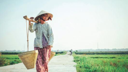 Vietnamese woman carrying basket